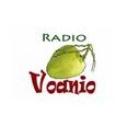 listen Radio Voanio online
