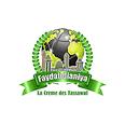 listen Radio Faydatidianiya online
