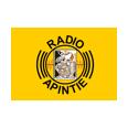 listen Radio Apintie online